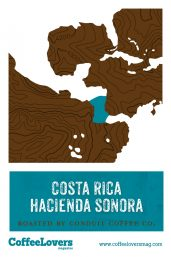 Coffee Lovers - Costa Rica Hacienda Sonora