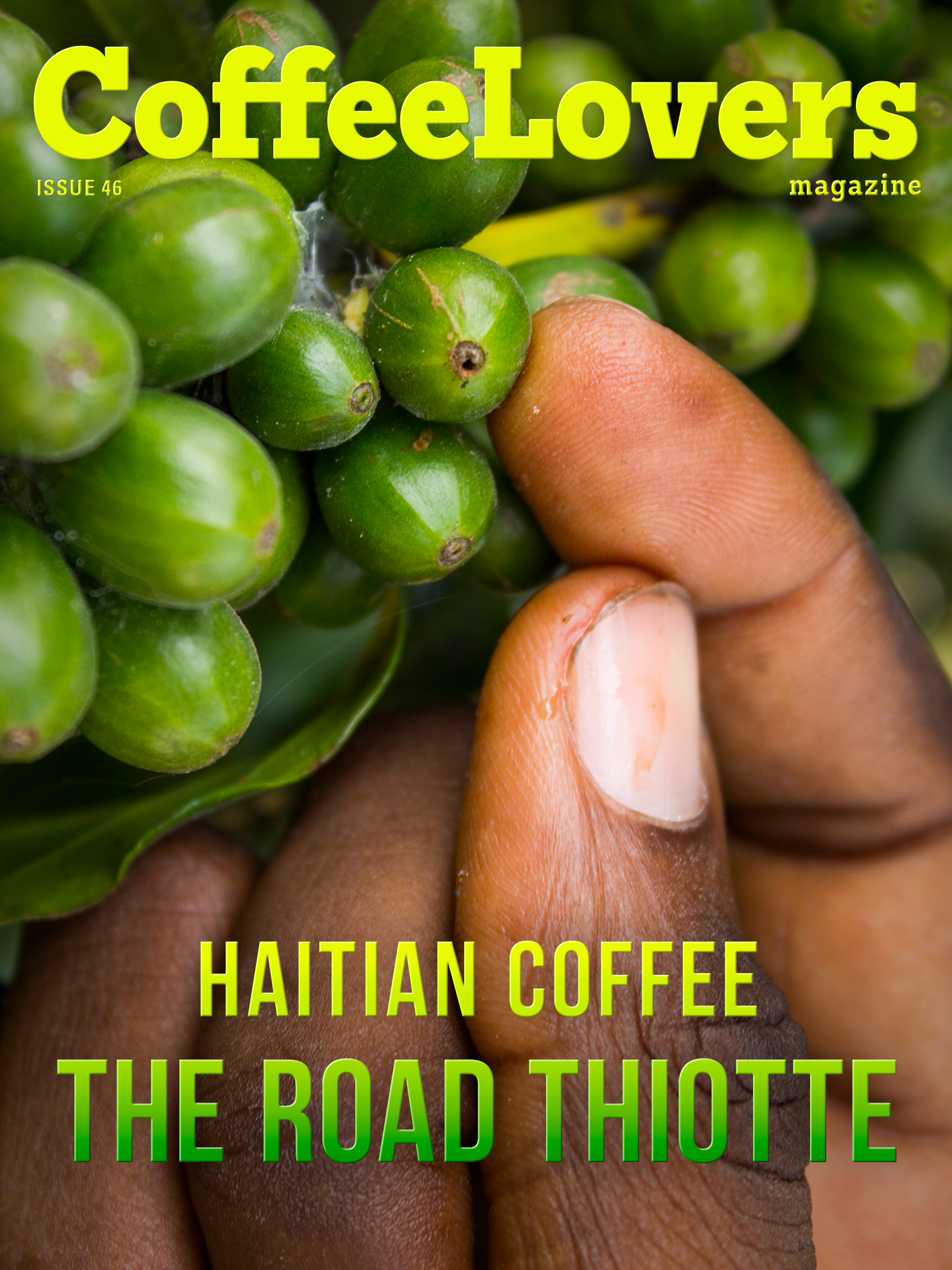 Haitian Coffee - The Road to Thiotte