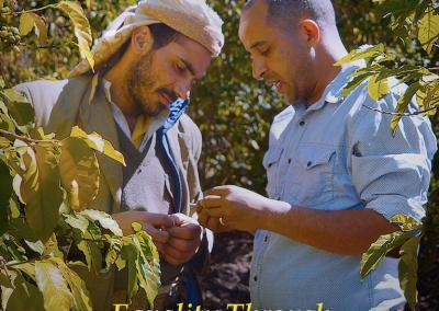 Equality Through Yemeni Coffee – Issue 48
